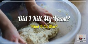 Did-I-Kill-My-Yeast