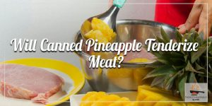 Will-Canned-Pineapple-Tenderize-Meat